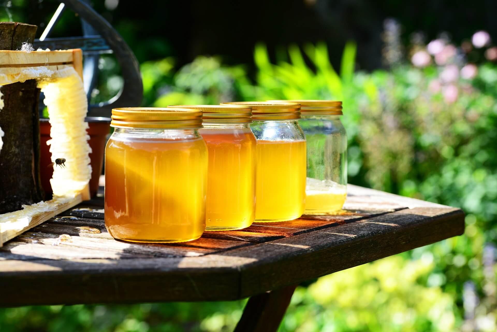 med od včelaře