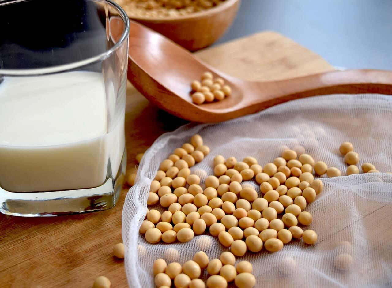 sojové boby, sojové mléko